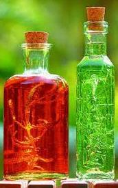 شراء Syrups