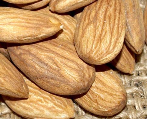 شراء Nuts Varieties