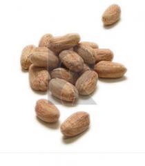 Grilled Peanuts