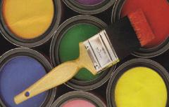 Exterior silicone paints